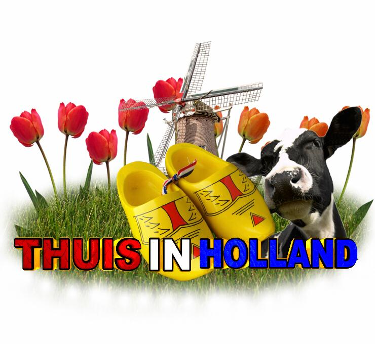 Thuis in Holland Logo