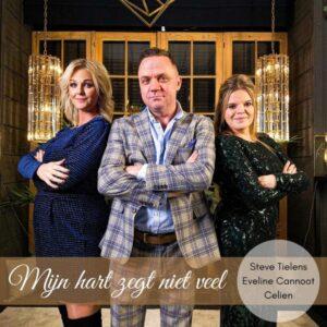 Vlaams trio zorgt voor de VBRO-Trotsplaat